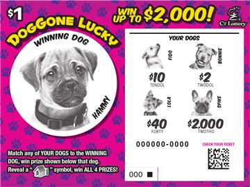Doggone Lucky rollover image